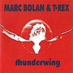 Marc Bolan Thunderwing