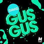 Gus Gus David