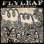 Flyleaf Remember To Live