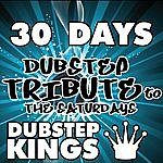 D 30 Days (Dubstep Tribute To The Saturdays)