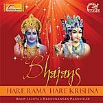 Anup Jalota Bhajans (Hare Rama Hare Krishna)