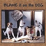 Blame It On The Dog Will Sing For Food