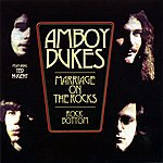 The Amboy Dukes Marriage On The Rocks / Rock Bottom