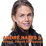 Andre Hazes Bloed, Zweet En Tranen