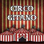 Circus Circo Gitano
