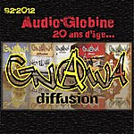 Gnawa Diffusion Audio-Globine : 20 Ans D'âge