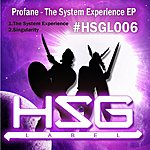 Profane The System Experience Ep