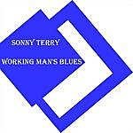Sonny Terry Working Man's Blues