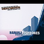 Bananafishbones Road To Nowhere