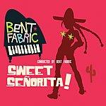 Bent Fabric Sweet Señorita