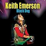 Keith Emerson Black Dog