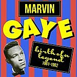 Marvin Gaye Birth Of A Legend (1961-1962)