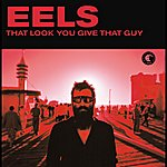 Eels That Look You Gave That Guy