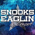 Blind Snooks Eaglin Snooks Eaglin In Concert