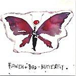 Aaron Flinn's Salad Days Flower+Bird=butterfly