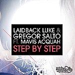 Laidback Luke Step By Step