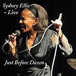 Sydney Ellis Just Before Dawn