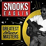 Blind Snooks Eaglin Greatest Blues Masters