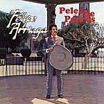 Felipe Arriaga Pelea De Perros