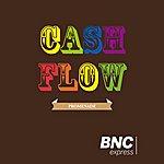 Promenade Cash Flow