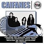 Caifanes Rock Latino