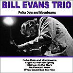 Bill Evans Trio Polka Dots And Moonbeams