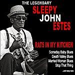 Sleepy John Estes Rats In My Kitchen :The Legendary Sleepy John Estes