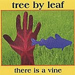 Tree By Leaf There Is A Vine
