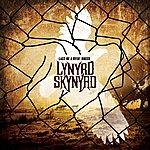 Lynyrd Skynyrd Last Of A Dyin' Breed
