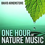 David Arkenstone One Hour Of Nature Music: For Massage, Yoga And Relaxation