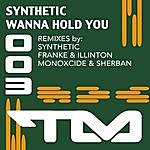 Synthetic Wanna Hold You