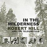 Robert Hill In The Wilderness
