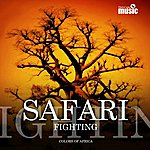 Safari Fighting (Colors Of Africa)
