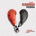 Silbermond Fdsmh (Für Dich Schlägt Mein Herz)