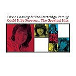 David Cassidy Could It Be Forever - The Greatest Hits