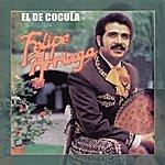 Felipe Arriaga El De Cocula