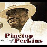 Pinetop Perkins How Long
