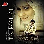 Chitra Tajmahal