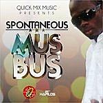Spontaneous Mus Bus