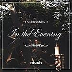 Mush In The Evening