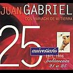 Juan Gabriel 25 Aniversario 1971-1996 Edicion, Volumenes 21 A 25
