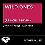 Starlet Wild Ones - Single