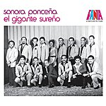 Sonora Ponceña A Band And Its Music