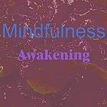 The Awakening Mindfulness