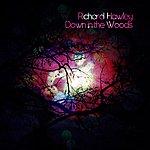 Richard Hawley Down In The Woods/Kindly Rain