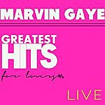 Marvin Gaye Greatest Hits For Lovers - Live