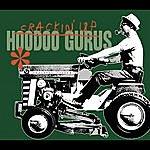 Hoodoo Gurus Crackin' Up