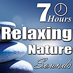 Nature Sounds Relaxing Nature Sounds