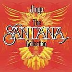 Santana Jingo: The Santana Collection