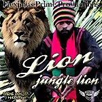 Lion Jungle Lion